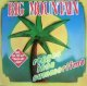 %% BIG MOUNTAIN / REGGAE INNA SUMMERTIME (GERMANY) YYY184-2783-5-59