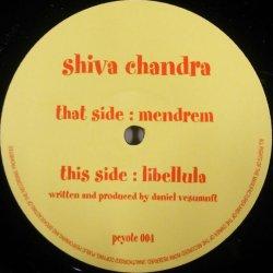 画像1: Shiva Chandra / Mendrem / Libellula  残少 A5579