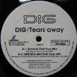 画像1: DIG / Tears away  原修正