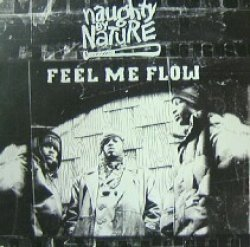 画像1: NAUGHTY BY NATURE / FEEL ME FLOW