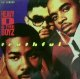 HEAVY D & THE BOYZ / TRUTHFUL
