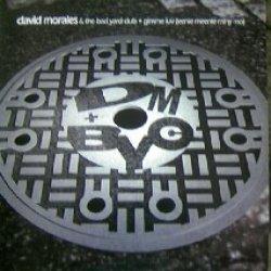 画像1: %% DAVID MORALES & THE BAD YARD CLUB / GIMME LUV featuring papa san (UK) MERX 390 YYY214-2315-5-10