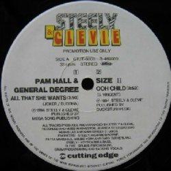 画像1: PAM HALL & GENERAL DEGREE / ALL THAT SHE WANTS